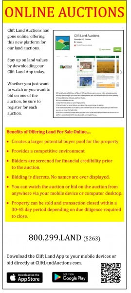 Online Auction Card_Page_1